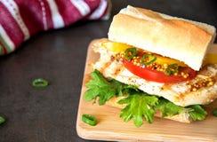 自创三明治用鸡汉堡、蕃茄、乳酪和无头甘蓝沙拉 库存照片