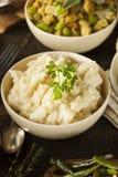 自创乳脂状的土豆泥 免版税库存图片