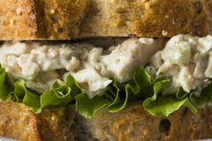 自创健康鸡丁沙拉三明治 免版税库存图片