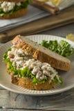 自创健康鸡丁沙拉三明治 免版税库存照片