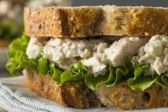 自创健康鸡丁沙拉三明治 库存图片