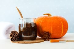 自创南瓜香料面部面具/洗刷做用成熟南瓜纯汁浓汤、糖和蜂蜜、桂香粉末和碾碎的咖啡 免版税图库摄影
