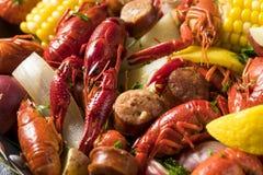 自创南部的小龙虾煮沸 免版税图库摄影