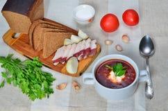 自创可口乌克兰传统soupborscht用黑麦面包、烟肉、大蒜、蕃茄和荷兰芹在轻的背景 免版税库存图片