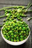 自创可口印地安快餐加香料的绿豆 免版税库存图片