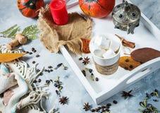 自创可可粉用蛋白软糖、香料和南瓜,舒适秋天静物画,秋天心情概念,季节性工艺装饰, hugge lif 免版税库存照片