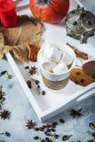 自创可可粉用蛋白软糖、香料和南瓜,舒适秋天静物画,秋天心情概念,季节性工艺装饰, hugge lif 免版税图库摄影