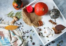 自创可可粉用蛋白软糖、香料和南瓜,舒适秋天静物画,秋天心情概念,季节性工艺装饰, hugge lif 免版税库存图片
