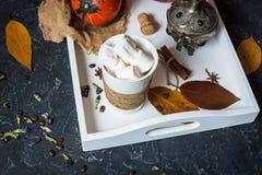 自创可可粉用蛋白软糖、香料和南瓜,舒适秋天静物画,秋天心情概念,季节性装饰, hugge生活方式 库存照片