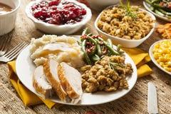 自创土耳其感恩晚餐 图库摄影