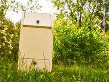 自创土豆容器绿草树和夏天天空背景 库存照片