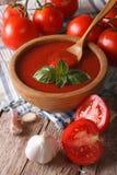 自创在碗特写镜头的西红柿酱用大蒜和蓬蒿 v 免版税库存图片