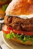 自创地中海沙拉三明治汉堡 免版税库存图片