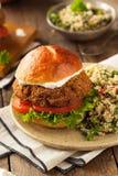 自创地中海沙拉三明治汉堡 库存图片
