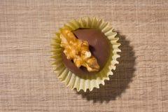 自创块菌状巧克力 叫作Camafeu在巴西 平的位置 库存图片