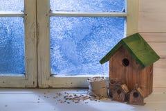 自创小鸟房子和输入冷的天 免版税库存图片