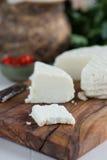自创干酪的山羊 库存图片