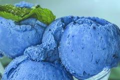 自创有机果子蓝色莓果冰淇淋用薄菏 图库摄影