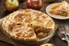 自创有机苹果饼点心 库存照片