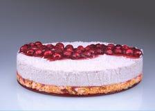 自创未成熟的乳酪蛋糕用莓果和椰子 库存照片