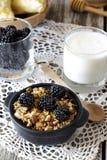 自创格兰诺拉麦片用酸奶和黑莓,健康早餐 免版税库存图片