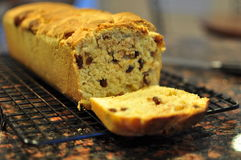 自创桂香面包用葡萄干 库存照片