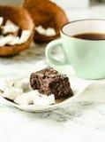 自创椰子棒棒糖富饶,未加工的素食主义者健康点心 免版税库存图片