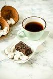 自创椰子棒棒糖富饶,未加工的素食主义者健康点心 免版税库存照片