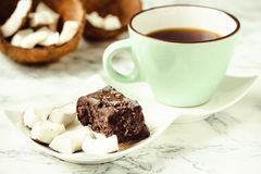 自创椰子棒棒糖富饶,未加工的素食主义者健康点心 库存照片