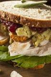 自创残余感恩晚餐火鸡肉三明治 免版税图库摄影