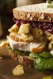 自创残余感恩晚餐火鸡肉三明治 免版税库存照片
