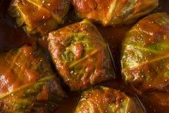 自创牛肉白菜卷劳斯 库存图片