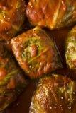 自创牛肉白菜卷劳斯 免版税库存图片