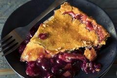 自创甜康科德紫葡萄饼 免版税图库摄影