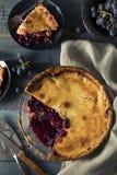 自创甜康科德紫葡萄饼 免版税库存照片