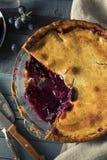 自创甜康科德紫葡萄饼 库存照片