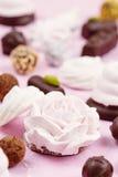 自创甜点的分类 蛋白软糖和巧克力 库存照片
