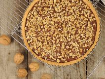 自创甜脆饼馅饼用巧克力和核桃在冷却的机架 免版税库存照片