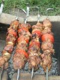 自创的烤肉 库存图片
