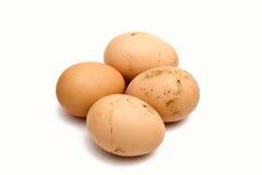 自创的鸡蛋 免版税库存照片