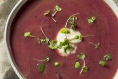 自创紫色地瓜土豆汤 免版税库存图片