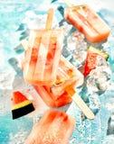 自创结冰的新鲜的西瓜冰棍儿 免版税库存照片