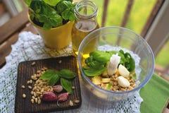 自创荷兰芹pesto调味汁和成份在木背景 库存照片