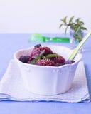 自创莓冰糕 图库摄影
