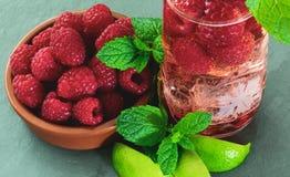 自创莓杜松子酒,用新鲜的莓、薄菏和石灰 免版税图库摄影
