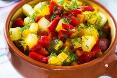 自创菜炖煮的食物用夏南瓜和胡椒 免版税库存图片