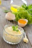 自创蒜泥蛋黄酱调味汁。 免版税库存图片