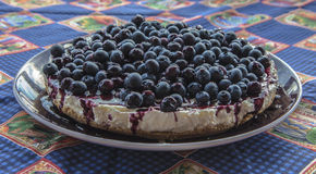 自创蓝莓乳酪蛋糕的特写镜头 库存图片