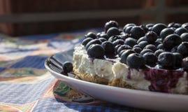 自创蓝莓乳酪蛋糕的特写镜头 库存照片