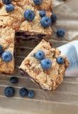 自创蓝莓蛋糕片断  库存图片